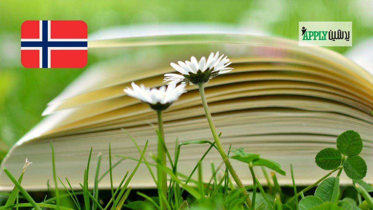 ویژگی های برجسته تحصیل در نروژ